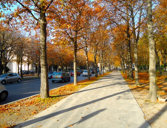 Beautiful Fall Autumn in Paris.